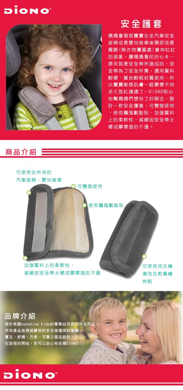DIONO-Belt-sheath-gray-info